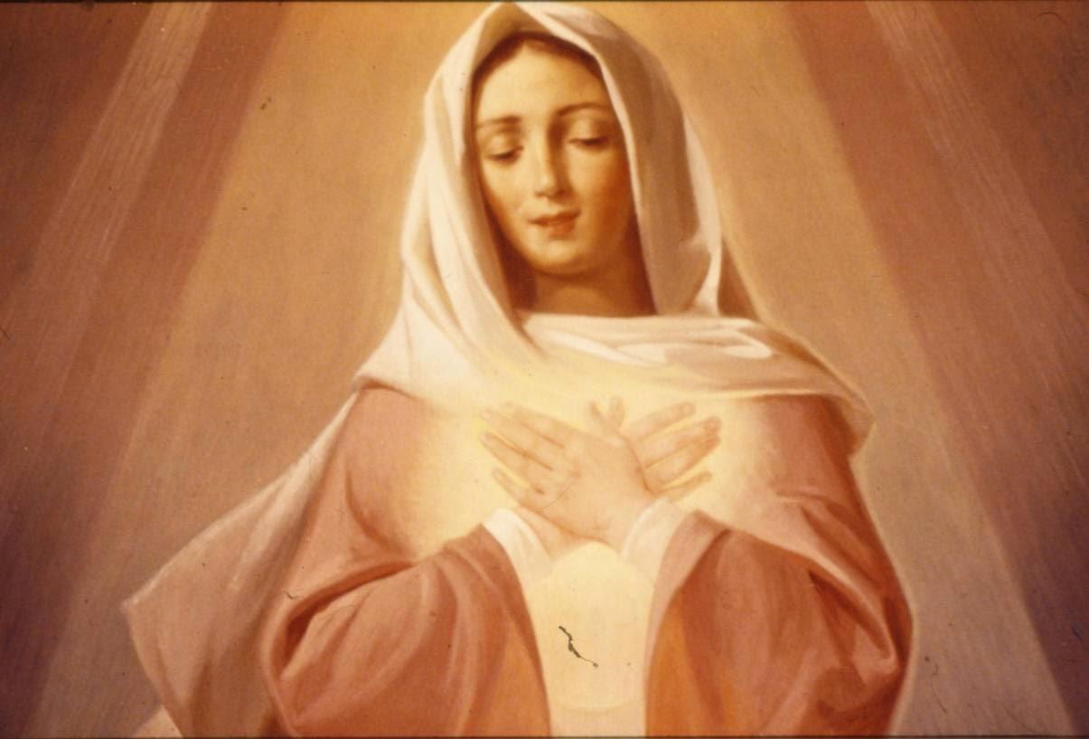 Maria tesouro